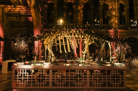 Events at Natural History Museum